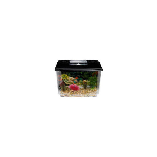 18L Complete coldwater fish tank kit