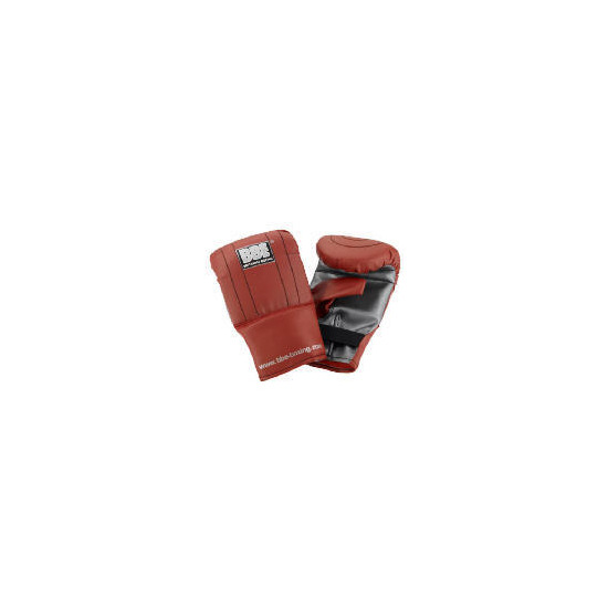 BBE Boxing  Mitts