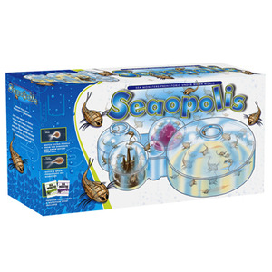 Photo of Seaopolis Toy