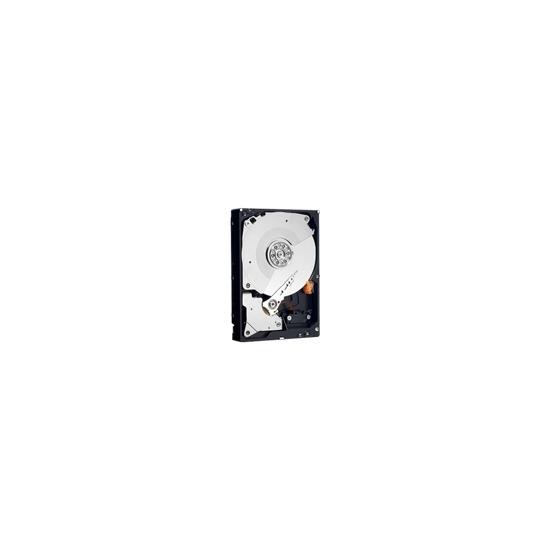 """WD Caviar Black WD1001FALS - Hard drive - 1 TB - internal - 3.5"""" - SATA-300 - 7200 rpm - buffer: 32 MB"""