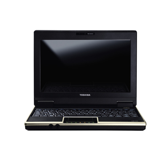 Toshiba NB100-11R