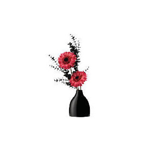 Photo of Pink Gerberas With Black Eucalyptus In Hip Flask Home Miscellaneou