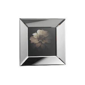 Photo of Mini Vita Mirror Framed Print Home Miscellaneou