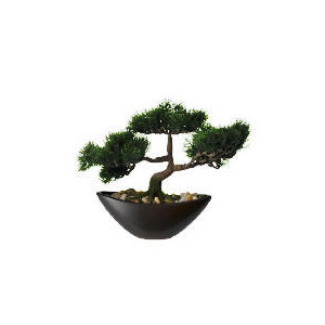 Photo of Artificial Images Large Cedar Bonzai In Boat Shaped Bowl Home Miscellaneou