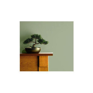 Photo of Tesco Finest - Green 2.5L Home Miscellaneou