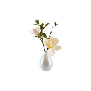 Photo of Pink Magnolia In Pearlised Egg Pot Vase Home Miscellaneou