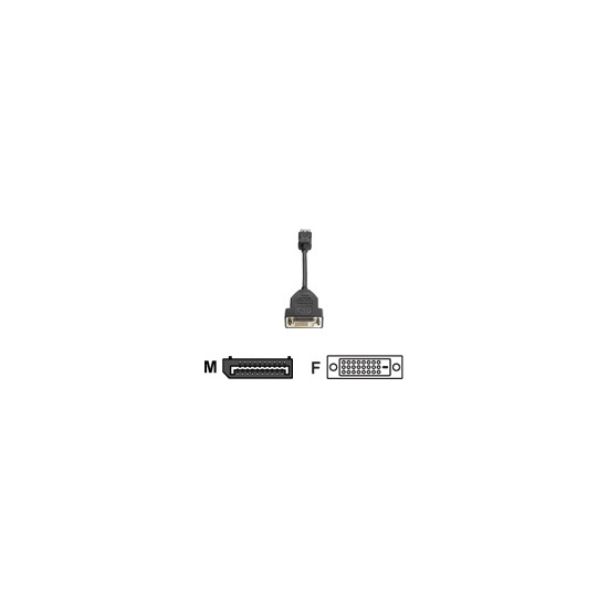 HP - DVI cable - 20 pin DisplayPort (M) - DVI-D (F) - 19 cm