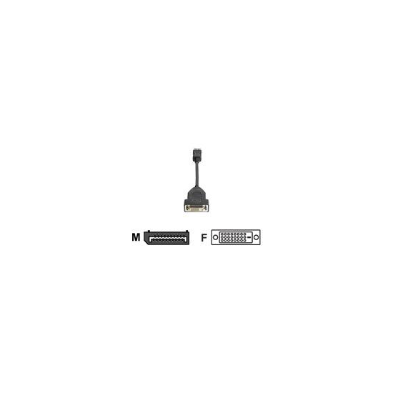 HP - DVI cable - 20 pin DisplayPort (M) - DVI-D (F) - 19 cm