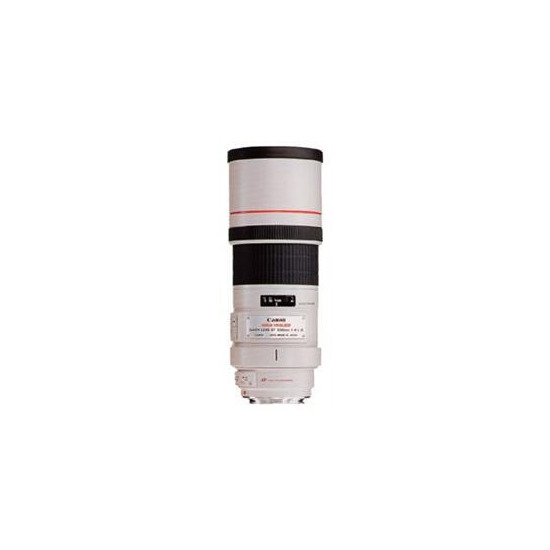 Canon 300mm f4 L IS USM Lens