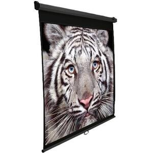 """Photo of Elite M100UWHBK Manual Pull Down 100"""" Projector Screen 16:9 Ratio - Black Casing Projection Accessory"""
