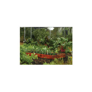 Photo of Rowlinson Vegetable Box Garden Equipment