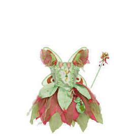 Tinkerbell Fairy Dress Up Age 3/5 Reviews