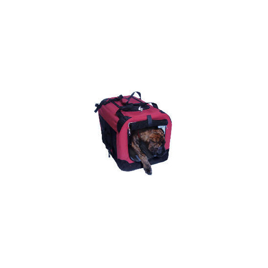 Fabric pet carrier medium