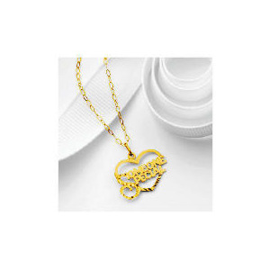 Photo of 9CT Gold Someone Special Heart Pendant Jewellery Woman