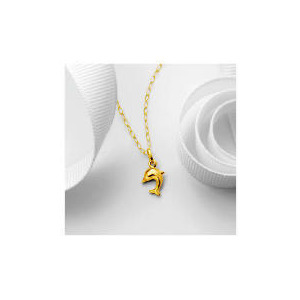 Photo of 9CT Gold Dolphin Pendant Jewellery Woman