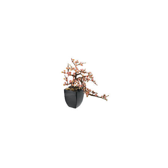 Pink Blossom In Black Ceramic