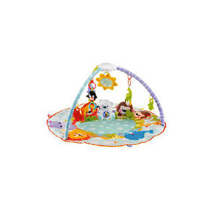Photo of Fisher-Price Precious Planet All-Around Musical Playtime Gym Toy