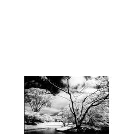 P Series Infrared 89B (P007) Reviews