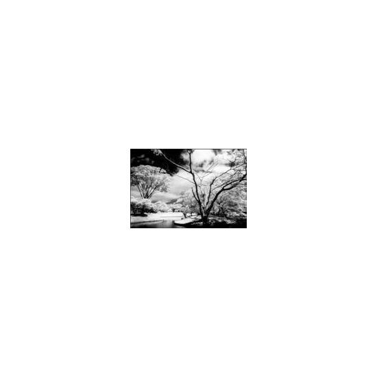 P Series Infrared 89B (P007)
