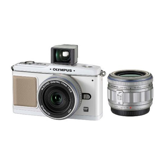 Olympus Pen E-P1 with 14-42mm lens