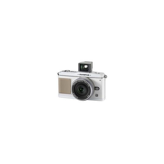 Olympus PEN E-P1 with 17mm lens