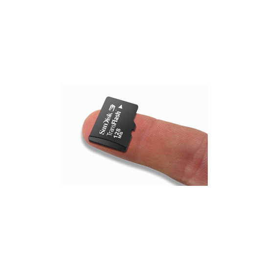 SanDisk Micro SDHC 4GB Card
