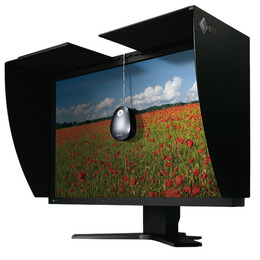 EIZO ColorEdge CG241
