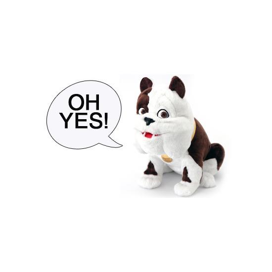Churchill Talking Dog