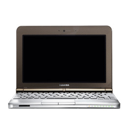 Toshiba NB200-10Z Reviews