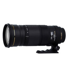 Sigma 120-300mm F2.8 APO EX DG OS HSM (Nikon mount) Reviews