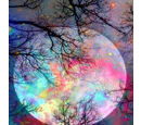 Image of Super Find - Painting By Numbers - Moon (includes Wooden Frame, 3xPaintbrush, 25xPaints, 2xHooks and Screws, 2xPack of Thumb Tacks and 2xPins)