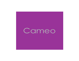 Cameo Kitchens Reviews