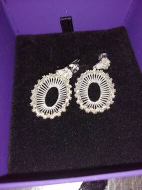 User supplied image of Diamond (Bgt) Earrings (with Push Back) in Platinum Overlay Sterling Silver 1.00 Ct, Silver wt 7.30 Gms